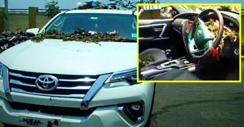 Toyota Fortuner का ओनर क्यों बना रहा है इसे कूड़ा इकठ्ठा करने वाली गाड़ी?