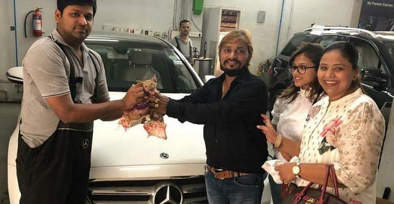 Mercedes Benz Kitten Rescue