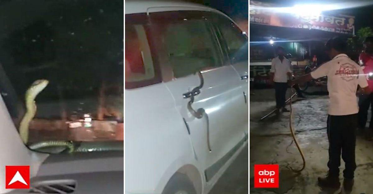 नासिक के व्यक्ति को गाड़ी चलाते समय अपनी Maruti Ertiga विंडशील्ड पर सांप मिला: सांप को बचाया गया